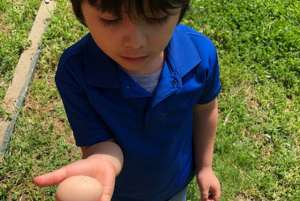 3 - Indianapolis stem based preschool